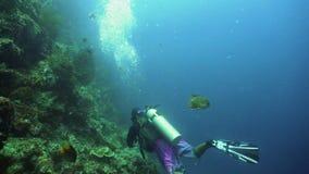 undervattens- dykarescuba stock video