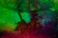 Undervattens- förorening med färgkemimaterial Royaltyfri Fotografi