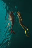 Undervattens- fors Royaltyfria Bilder