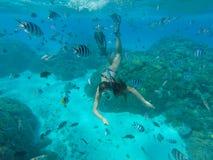 Undervattens- foto av att snorkla för kvinna arkivbilder