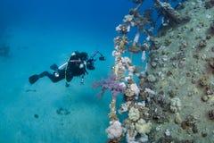 undervattens- fotograf Arkivfoto
