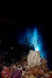 undervattens- grotta Royaltyfria Bilder