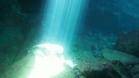 Undervattens- grotta och solstrålar arkivfilmer