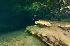 Undervattens- grottor för dykare som dyker Ginnie Springs Florida USA Arkivfoton