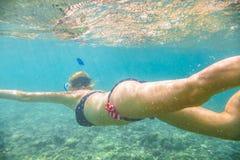 Undervattens- kvinnlig apnea Royaltyfria Bilder