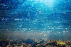 Undervattens- landskap i flodvatten Royaltyfri Fotografi