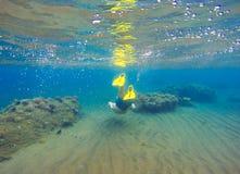 Undervattens- landskap med snorkel- och korallreven Snorkla mannen i maskering som undersea simmar Arkivfoto