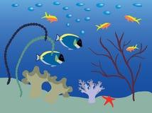 undervattens- liggande arkivbilder