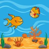undervattens- livstid Fotografering för Bildbyråer