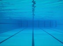 undervattens- pölsimning Arkivbild