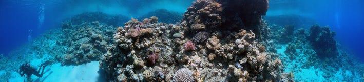Undervattens- panorama Arkivbild