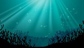 Undervattens- plats för kontur med korallreven Royaltyfria Bilder