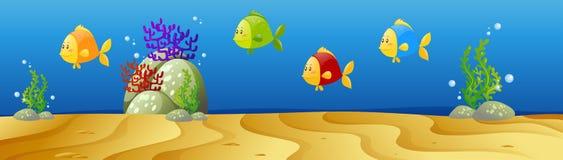 Undervattens- plats med många fisk Arkivbild