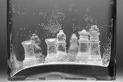 Undervattens- schackstycken Royaltyfri Foto