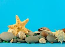undervattens- set sjöstjärna för objekthav Fotografering för Bildbyråer