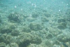 Undervattens- sikt Royaltyfri Fotografi