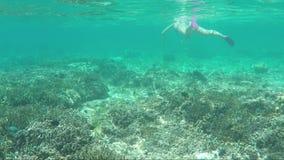 Undervattens- sikt av dykaren i maskering lager videofilmer