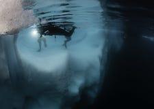 Undervattens- sikt för isberg Arkivfoto
