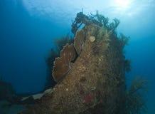 undervattens- skeppsbrott Arkivbilder