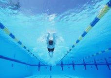 Undervattens- skott av ung manlig idrottsman nensimning i pöl royaltyfri bild
