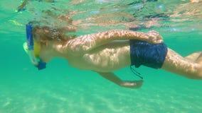 undervattens- skott 4k av en gullig pys som snorklar med en maskering och ett rör i ett tropiskt hav med massor av tropiska fiska stock video