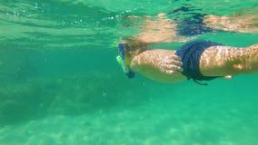 undervattens- skott 4k av en gullig pys som snorklar med en maskering och ett rör i ett tropiskt hav med massor av tropiska fiska arkivfilmer
