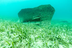 Undervattens- skräp arkivbilder