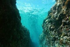 Undervattens- spricka i det yttre revStilla havet arkivfoto