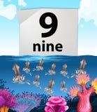 Undervattens- tioarmade bläckfiskar för nummer nio och nio Royaltyfri Foto