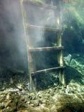 Undervattens- trappa i Granen Cenote arkivfoton