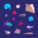Undervattens- varelser ställde in med fisken, krabban, skal, sjöstjärna Tecknad filmvektorillustration, gulliga havsdjur och olik stock illustrationer