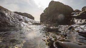 Undervattens- yttersida med strålar av ljus Härlig solnedgånghavSeascape stock video