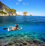 Underwater и разделенный поверхностью взгляд в тропиках Стоковая Фотография