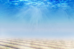 Underwater. Scene. background for your work Royalty Free Stock Images