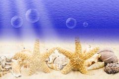 Underwater Stock Images