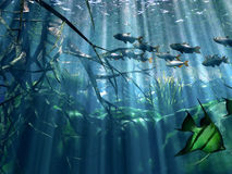 Underwater. Life in the sea Royalty Free Illustration