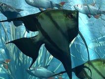 Underwater. Illustration of marine life in acquarium Stock Illustration