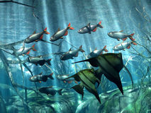 Underwater. Illustration of marine life in acquarium Royalty Free Illustration