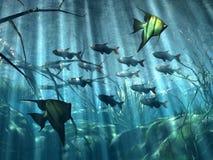 Underwater. Illustration of  marine  life in acquarium Vector Illustration