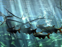 Underwater. In the acquarium tank Royalty Free Illustration
