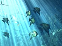 Underwater. Illustration of underwater life in the sea Royalty Free Illustration