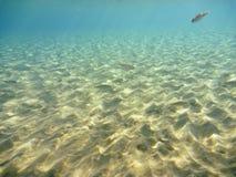 Underwater in the Aegean Stock Image