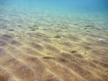 Underwater in the Aegean Royalty Free Stock Image