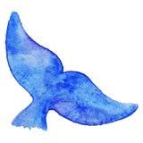 Underwater animale della coda della balena blu dell'acquerello isolato Immagine Stock