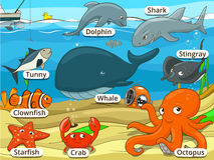 Underwater animals and fish with names cartoon Stock Photo