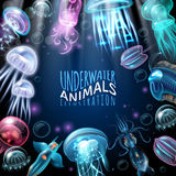 Underwater Animals Frame Background Stock Photo