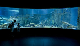 Underwater aquarium observation room Royalty Free Stock Photo