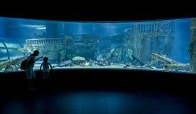 Underwater aquarium observation room Royalty Free Stock Photo