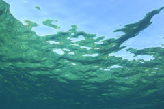 Underwater Background Stock Photography