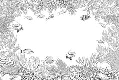 Underwater Background with Corals  and Fishes. Hand drawn underwater natural elements. Sketch of reef corals  and swimming fishes background.  Monochrome Stock Photography